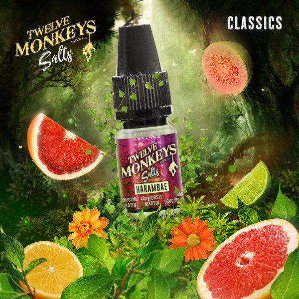 Twelve Monkeys - Harambae Nikotinsalz