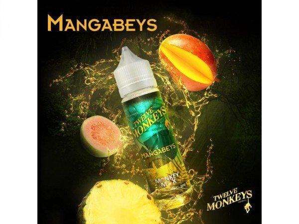 Twelve Monkeys - Mangabeys DIY