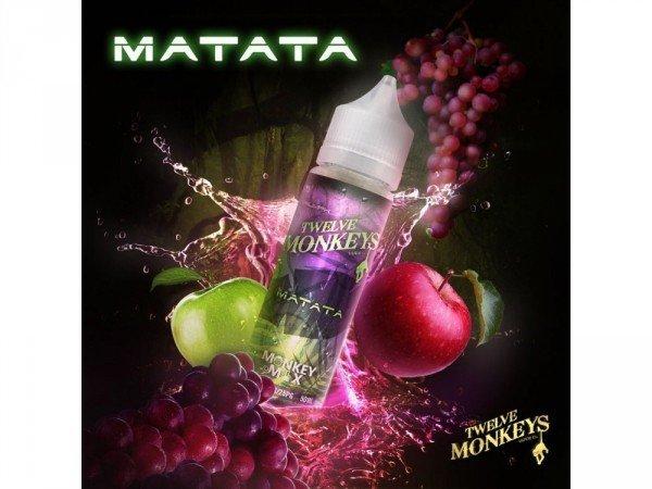 Twelve Monkeys - Matata DIY